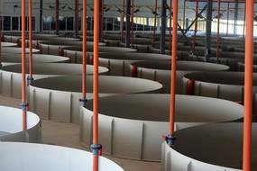 Очистные сооружения для рыбопереработки, оборудование для рыбы, оборудование для разведения рыбы, оборудование для выращивания рыбы, бассейны для разведения мальков
